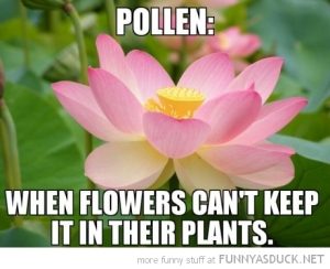 funny-pollen-flowers-cant-keep-it-in-plants-pics