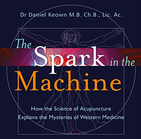 The Spark in the Machine (Book)