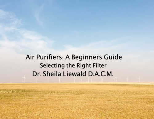 Air Purifiers: A Beginners Guide | Dr. Sheila Liewald, D.A.C.M.