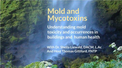 Mold and Mycotoxins: Understanding Mold Toxicity and Occurrences in Buildings and Human Health